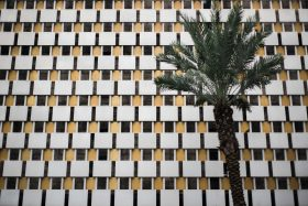 Hotels are huge and endless in New Orleans, Louisiana, USA. A palm tree scales the front of this white yellow and black motel facade in America.