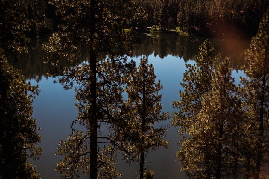 Michelia Kramer Photography, America, USA Photography, Amsterdam Photographer, Netherlands, trees, silverton, train